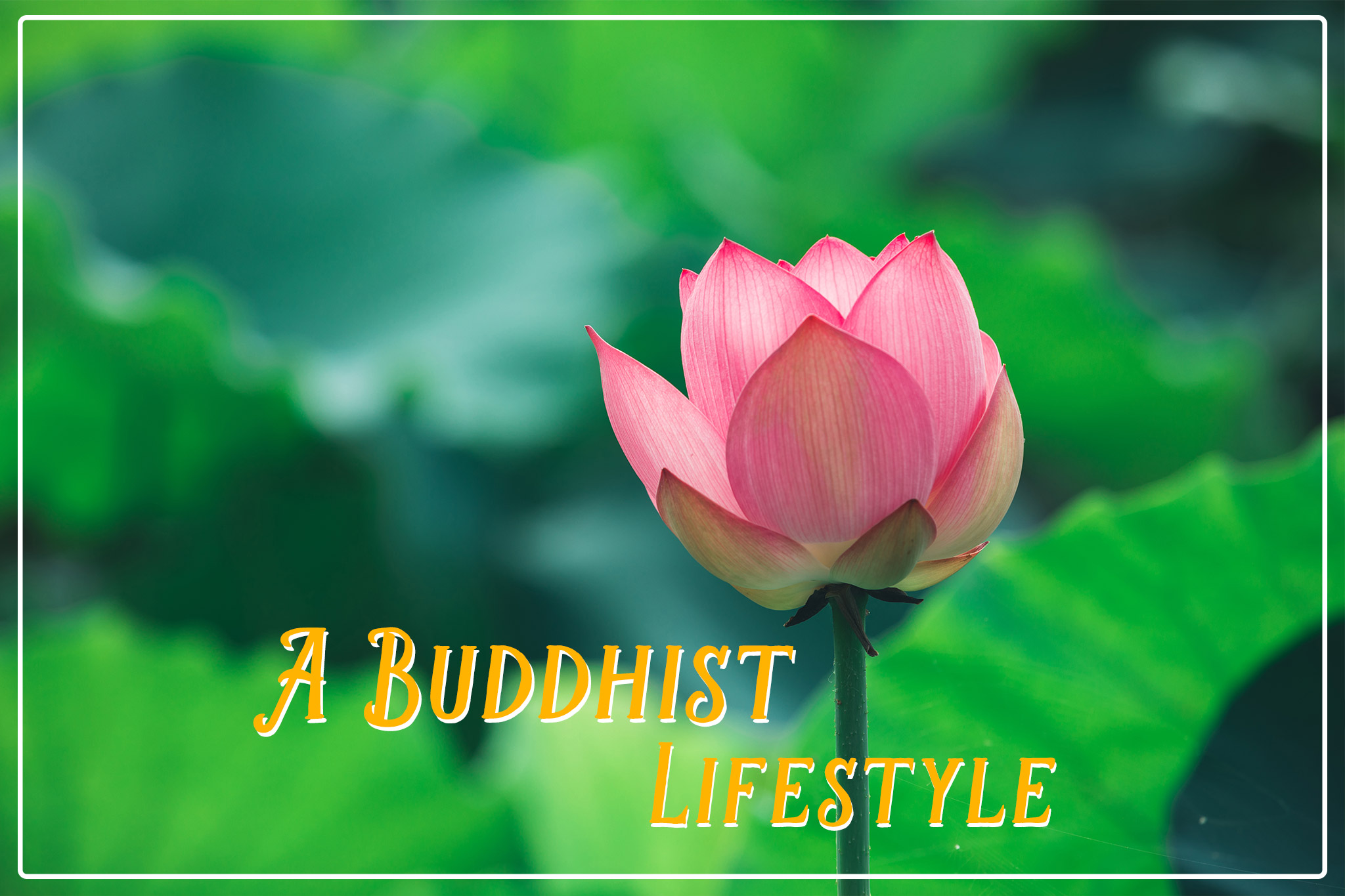 A Buddhist Lifestyle